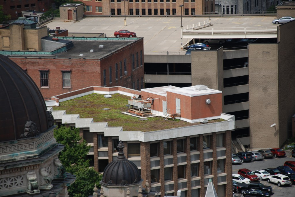 GIF - Monroe Building Green Roof