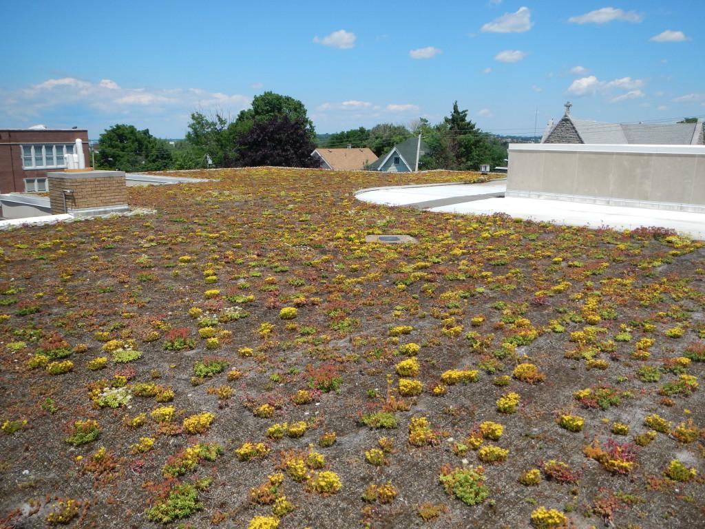 Hazard Roof