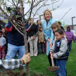 Arbor Day - Bellevue Tree Planting (photo)
