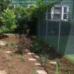 Barnabas Center Rain Garden - OEC Demo Project (photo)