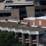 GIF - Monroe Building Green Roof (photo)