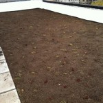 GIF - Putnam Properties Green Roof (photo)