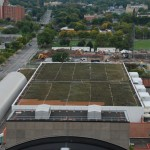 OnCenter Green Roof (photo)