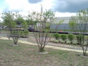 Greening the Gray at LHB Storage