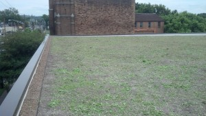 USPS Green Roof Complete