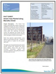 Street Trees on Marcellus Ave Fact Sheet