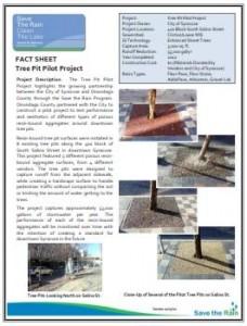 Tree Pit Pilot Fact Sheet